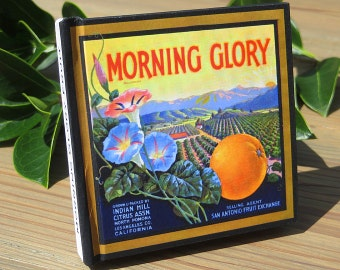 Small Blank Journal - Morning Glory Brand - Fruit Crate Art Print Cover