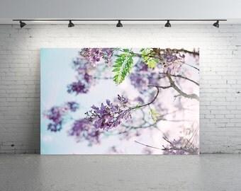 Unique Jacaranda Photo, Purple FLOWER Photo, Purple Jacaranda Photo, Film Photography, Flower Photography, Purple Jacaranda Tree photo,