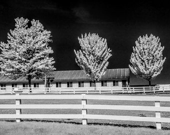 Country Dairy Farm Store, Deli and Visitor Center near Shelby Michigan with Wood White Fence and Trees in Infrared No.IR190 Photograph