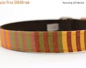 ON SALE Orange and Yellow Striped Dog Collar