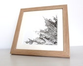 Original charcoal drawing, Sea holly water droplets, seaside art, black and white, pencil drawing, plant drawing, water droplets