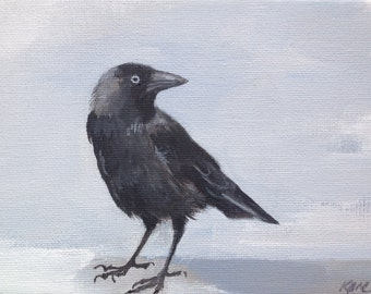 "Watchful jackdaw painting 7"" x 5"""
