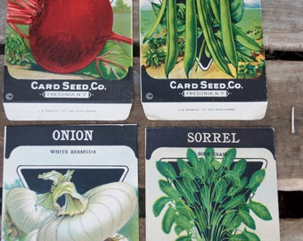 Lot of 4 Antique vintage 1920s Card Seed Co. seed packets Fredonia, NY Onion Sorrel Beets Beans