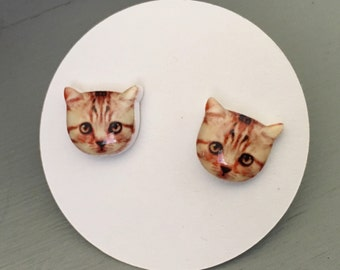 Cat Earrings on titanium posts, Kitty Earrings, Last Pair!