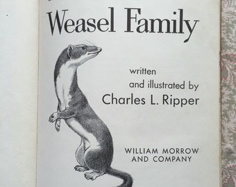 The Weasel Family - Vintage Kids Book by Charles. L Ripper, 1959