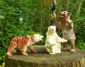 RESERVED FOR KONRAD: 1 Brown Bear