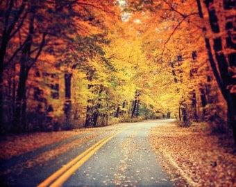 Autumn Landscape Print or Canvas Art, Vivid Orange Gold Yellow, Autumn Leaves, Fall Decor, Fall Landscape, Pennsylvania Presque Isle Road.