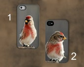 Bird Photography Phone case,common redpoll bird phone case,ipad case,unique photography,nature photography,iPhone case,Samsung Galaxy case,