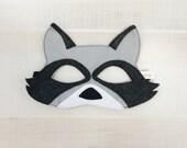 Raccoon Mask + Tail