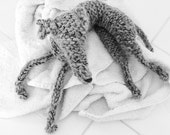 Lurcher knitting pattern