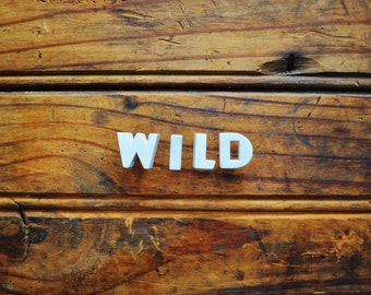 WILD - Vintage Ceramic Push Pins