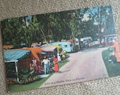 Vintage Postcard  Life In a Trailer Park In Florida    Glamping