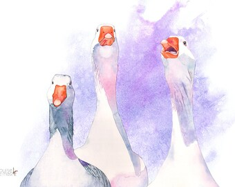 Goose print, goose painting, goose watercolor, geese print, geese painting, G14316, 5 by 7 size, Geese watercolour painting