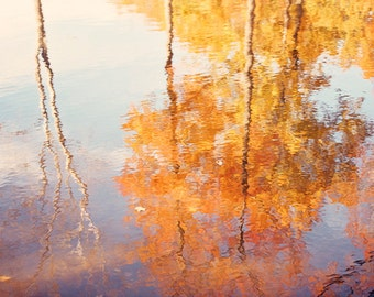 "Orange Nature Photography, Autumn Tree Art Print, Fall Trees Reflection Photo, Purple Gold Nature Botanical Picture, ""Autumn Reflections"""