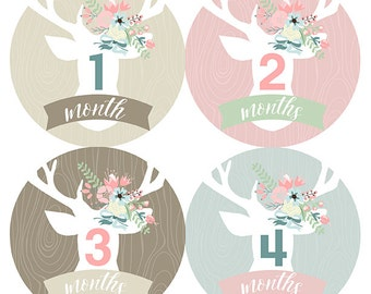 FREE GIFT, Baby Month Stickers Girl, Woodland Monthly Baby Stickers, Baby Girl, Deer, Antlers, Pink, Mint, Tan, Beige, Flowers, Baby Gift