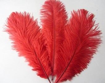 100pcs Red  ostrich feather for wedding table centerpiece,feather centerpiece,white ostrich feathers,wedding table decoration AAA