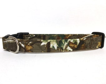 Dog Collar- The Hunter