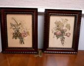 Reserved for JulieAntique framed botanical prints in original frames early 1900s