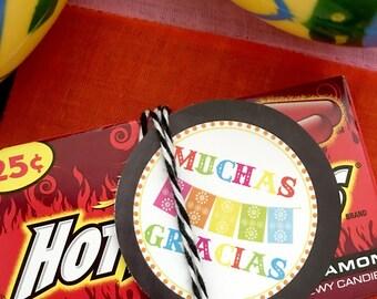 Cinco de Mayo Party Fiesta Party Favor Tag INSTANT DOWNLOAD