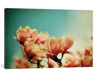 iCanvas Watercolor Magnolias Gallery Wrapped Canvas Art Print by Alicia Bock