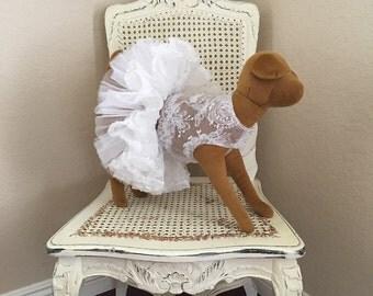 Vintage Romance Dog Dress