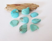 Natural Arizona Turquoise Free Form Cabochon Lot  15.10cts