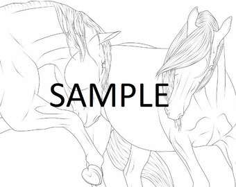 Andalusian Lusitano Horse Equine Coloring Pages Line Art Digital Download 12 Pieces