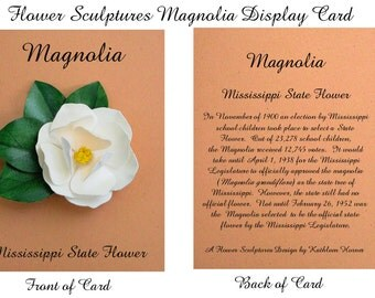 Mississippi State Flower - Magnolia