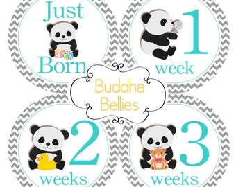 BUNDLE PACK of 20 stickers - Panda Baby Month Stickers - Just Born Sticker - Gender Neutral Baby Stickers - Panda Baby Milestones