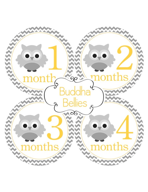 Baby Monthly Stickers Yellow and Grey Chevron Owls Monthly Stickers Baby Month Stickers Owl Nursery Owl Baby - Baby Decals -Owl Nursery Gift