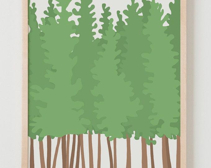 Fine Art Print.  Pine Trees.  February 22, 2016.
