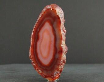 Agate slice pendant Semiprecious stone, Jewelry supplies S6885