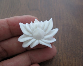 Gorgeous blooming lotus flower, S7028