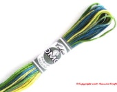 DMC 4506 Coloris Variegated 6 Strand Floss Primavera (Spring)