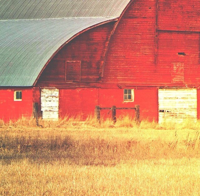 Red Barn Wall Decor : Montana wall decor landscape barn red by