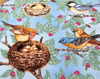 GORGEOUS Vintage COTTON Timeless Treasures Bird FABRIC  2 Yards