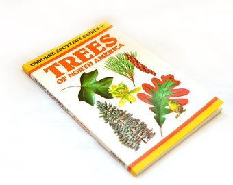 Vintage Usborne Spotters Guide Trees of North America Botany Nature Book