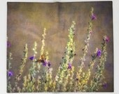 Fleece Blanket Desert Sage & Butterfly
