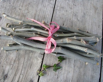 Maple Sticks, Craft Supply, Magical Tool, Wicca, Pagan, Ritual Wood, Natural tree branches, set of 7
