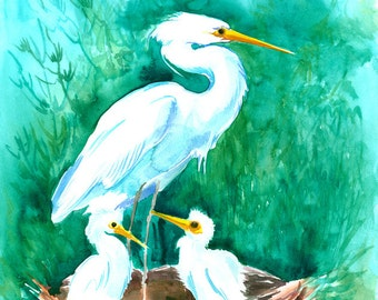 Snowy Egret and Babies, 12 X 16 in, original watercolor painting
