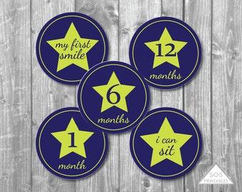 Blue Star Baby Milestone Stickers, Baby Boy Monthly Milestone, First Year Milestones, Printable Sticker, Printable Iron On, Babys first year