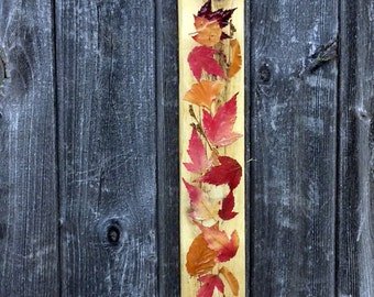 FALLING AUTUMN LEAVES - Rustic Fall Cabin Leaf Decor, Pressed Autumn Foliage Camp Art, Preserved Leaves, Thanksgiving Decoration
