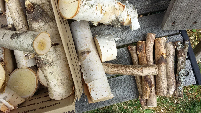 White birch wood tree logs sticks chunks di therusticwoodshed for White birch log crafts