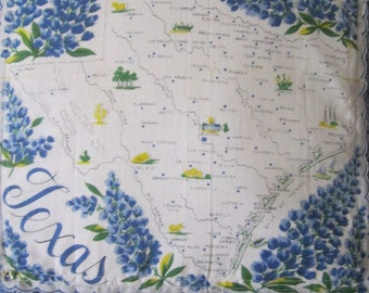 Texas State Pillow Vintage State Handkerchief Light Blue Bandana Fabric Repurposed Chambry Fabric Handmade in California One of a Kind
