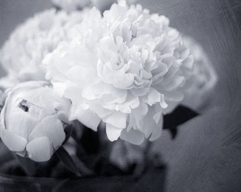 Flower photography, black and white photography, gray wall decor photo print, peonies fine art print, neutral black white flower picture
