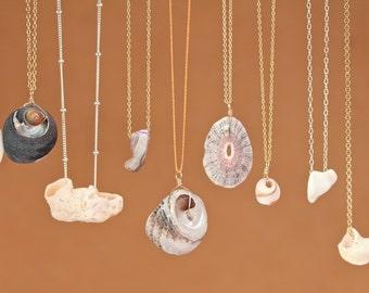 Sea treasure necklace - malibu necklace - california souvenir - sea shell necklcace - a hand collected sea shell from the beaches of malibu