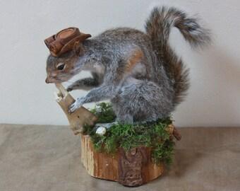 Human eating steampunk taxidermy squirrel