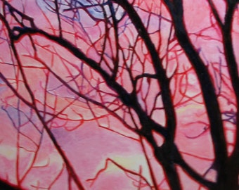 Pink Sunset with Trees in Silhouette