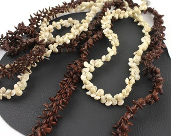 Seashell & Seed Necklace Set