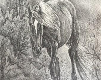 Black and white horse drawing (original)